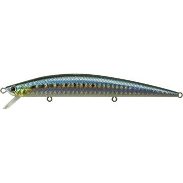 Duo Tide Minnow 120 Slim sardine kunstaas zeebaars 12cm 13g