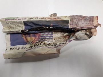 Hetlozevissertje Diepvries Tappen (enkel afhaling) zwart levend aas 1x10st