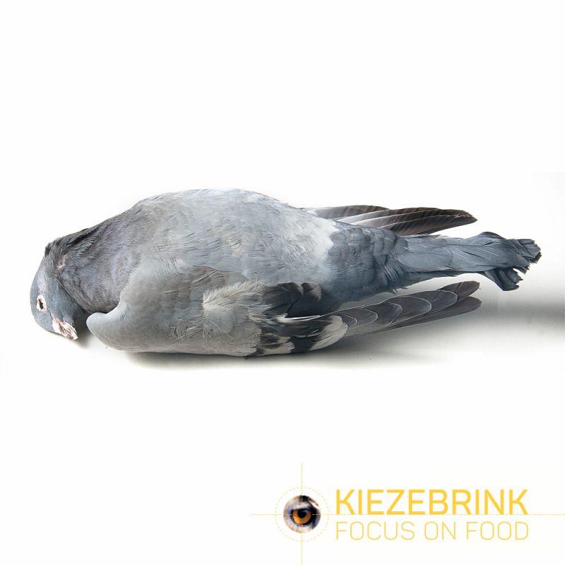 Kiezenbrink Diepvries Duif Per Stuk (enkel afhaling) blanc - brun - gris