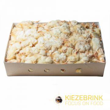 Kiezenbrink Diepvries Kuikens 1kg (enkel afhaling) geel voeding roofvogels