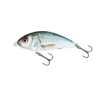 Salmo Fatso Sinking REAL DACE roofvis kunstaas 14cm 115g