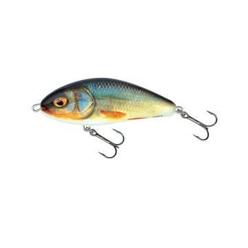Salmo Fatso Sinking REAL ROACH roofvis kunstaas 14cm 115g